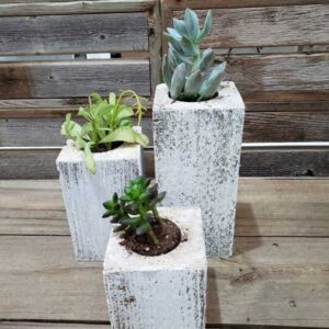 Whitewash Succulent Planter Box Set Made from Reclaimed Wood - Perfect for Real or Faux Succulent Plant